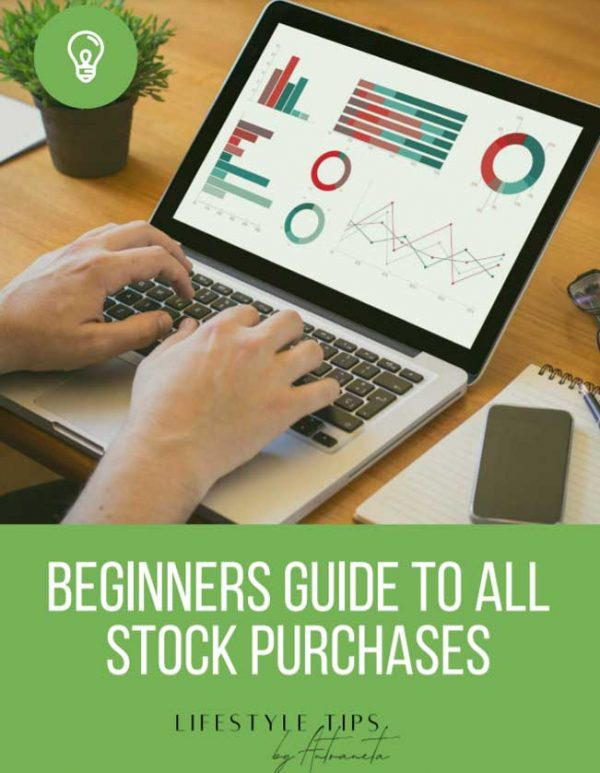 Beginners Guide To All Stock Purchases Ebook Cover Image